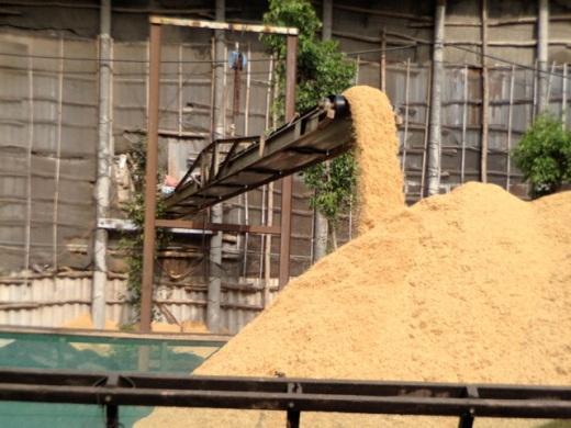 Vietnam rice factory conveyor belt loading rice onto a barge